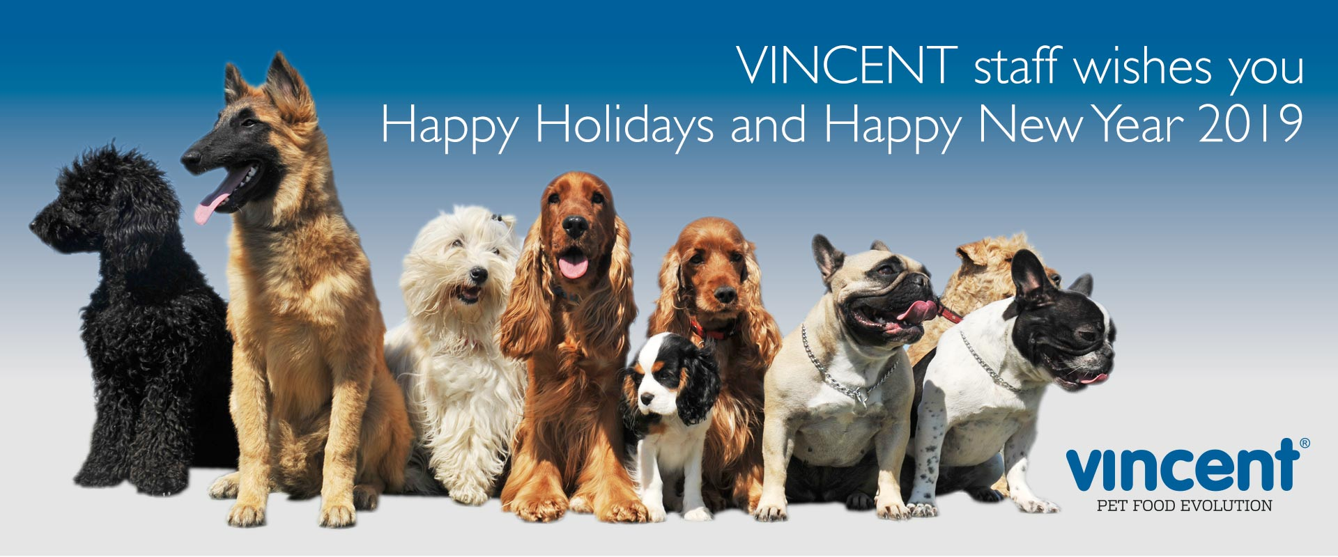 Vincent staff wishes you Happy Holidays